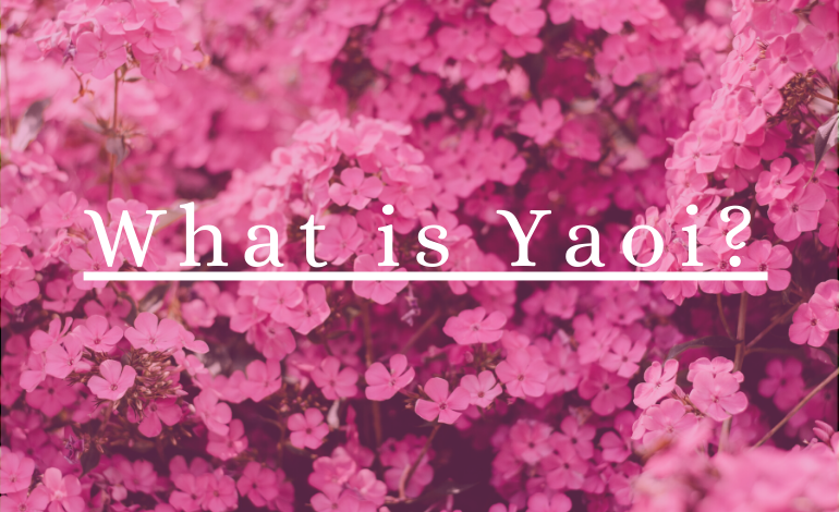 Photo of What is Yaoi?