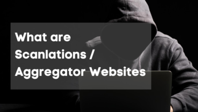 Photo of What are Scanlations/Aggregator Websites?