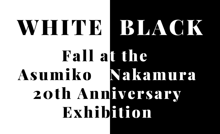 Photo of White and Black Fall at Asumiko Nakamura 20th Anniversary Exhibition