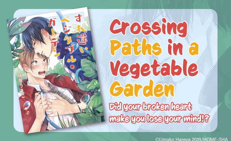 Photo of Crossing Paths in a Vegetable Garden